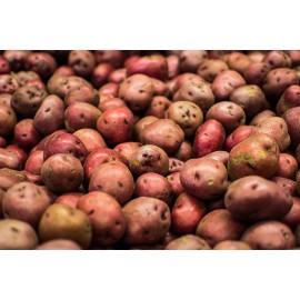 Patata vermella - Bossa 1kg aprox -